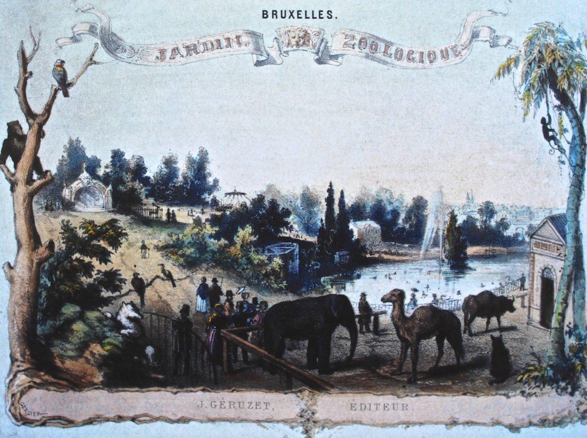 acienne cart epostale figurant le jardin zoologique de Bruxelles en 1856