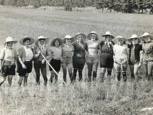 Mondine, ouvrières saisonnières dans la riziculture, nord de l'Italie, ca 1950.