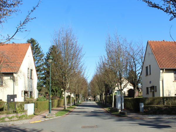 Vue d'une rue de la cité de Moortebeek